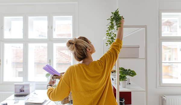 12 dicas para evitar umidade e mofo